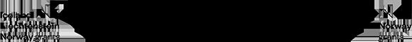 Project  L.I.K.E. Logo